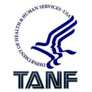 Image result for Temporary Aid For Needy Families (TANF)