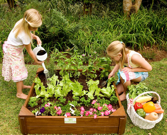 Just-for-Kids Veggie-Garden-Box gardening