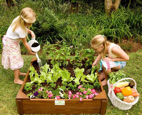 Just-for-Kids Veggie-Garden-Box gardening
